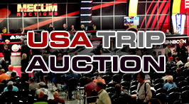 usa-trip-auction